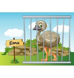 Cartoon Zoo Emu vector