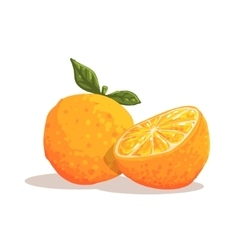 Fresh Full Garden Orange WIth Leaf And Orange vector image