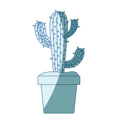 blue shading silhouette with cactus of three vector image