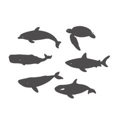 Shark Sea Turtle Dolphin and Whales vector image