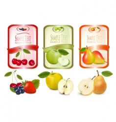 three labels with fruits vector image