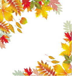 corners with autumnal leaves vector image vector image