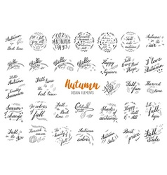 Autumn hand lettering and calligraphy design vector
