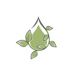 Droplet leaf ornament vector