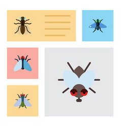 Flat icon buzz set of fly mosquito dung and vector