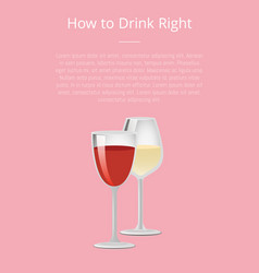 How to drink right info poster with glass of wine vector