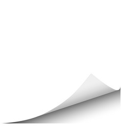 Sheet of white paper with curled corner vector