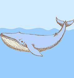 Sketch cute whalel in vintage style vector image