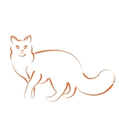 Sketched cat vector image