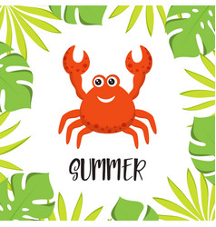 summer red crab vector image