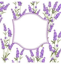 The Lavender frame line vector