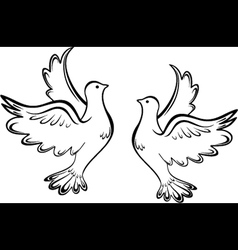 Two dove vector