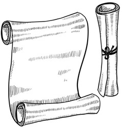 doodle scroll paper vector image