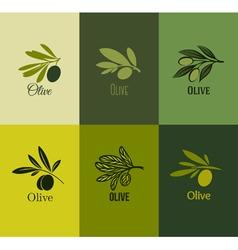 Olive branch Set of labels vector image vector image