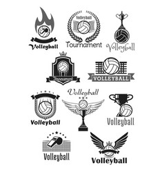 volleyball tournament sport club icons set vector image vector image