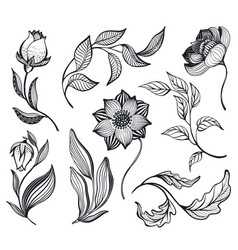 collection with hand drawn doodle flowers vector image