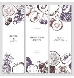 Fruit Banners - hand drawn design vector