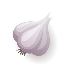 Garlic icon isolated on white background organic vector