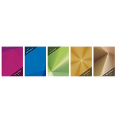 graphic abstract backgrounds vector image