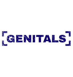 Grunge textured genitals stamp seal inside corners vector