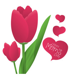 happy moms day tulip flower ornament card vector image