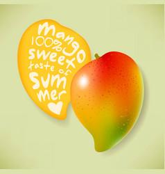 Juicy mango and its slice vector