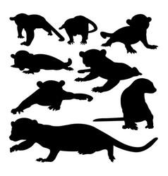 Kinkajou animal silhouettes vector