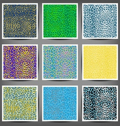 Set of seamless leopard prints vector