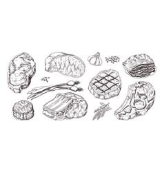 steak vintage sketch with beef and pork chops vector image