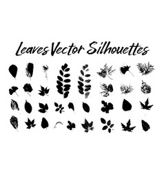 tree leaves silhouettes plants and nature vector image