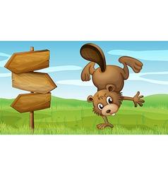 Beaver signboard vector image