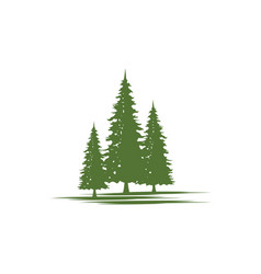 cedar tree icon vector image