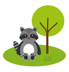 cute and tender raccoon in the camp character vector image