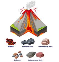 Diagram showing eruption volcano vector