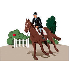 Horse and rider in the race vector