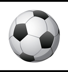 soccer ball on white vector image vector image