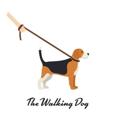 Beagle dog with a leash - color serious dog vector