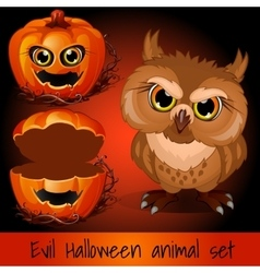 Open pumpkin and evil owl on a red background vector image