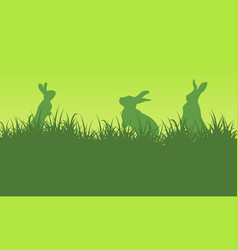 silhouette of bunny on green backgrounds vector image vector image