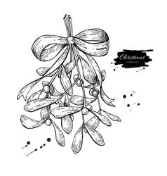 Mistletoe with bow and ribbon christmas decor vector