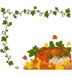 an orange pumpkins vector image