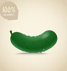 Cucumber vector