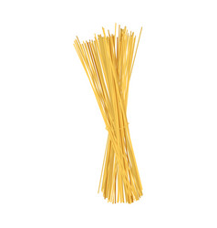 Italian wheat spaghetti bundle icon realistic vector