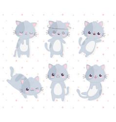 kawaii cartoon different expressions cute cats vector image