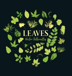 Print tree leaves greenery flora or plants vector