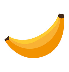 Sweet banana fruit vector