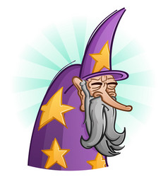 wise old bearded wizard cartoon vector image