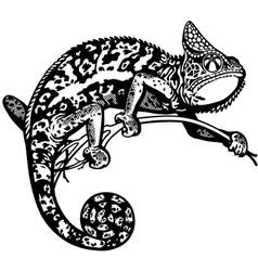 chameleon black white vector image vector image