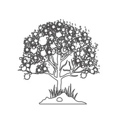 grayscale contour with leafy tree vector image vector image