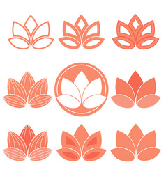 lotus icons vector image vector image